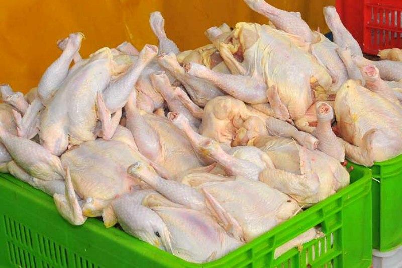 مرغ کیلویی ۲ هزار تومان در پایتخت ارزان شد