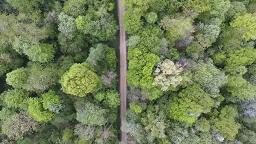 طولانیترین مسیر پیادهروی جهان