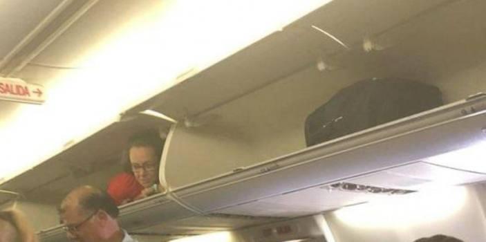دلیل حضور مهماندار خطوط هوایی آمریکا در محفظه بار هواپیما چه بود؟
