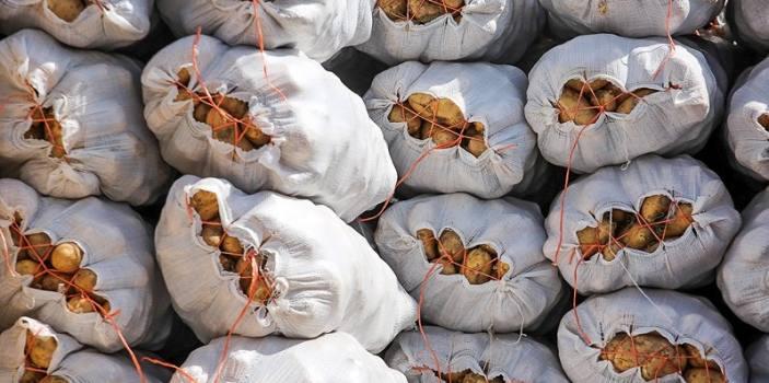 لغو ممنوعیت صادرات سیبزمینی به عراق