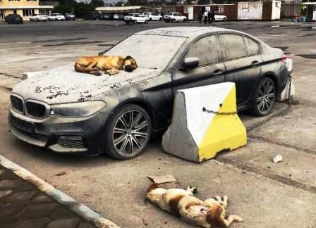 پرونده واردات خودرو خارجی بسته شد