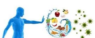 نقش تغذیه در تقویت سیستم ایمنی بدن