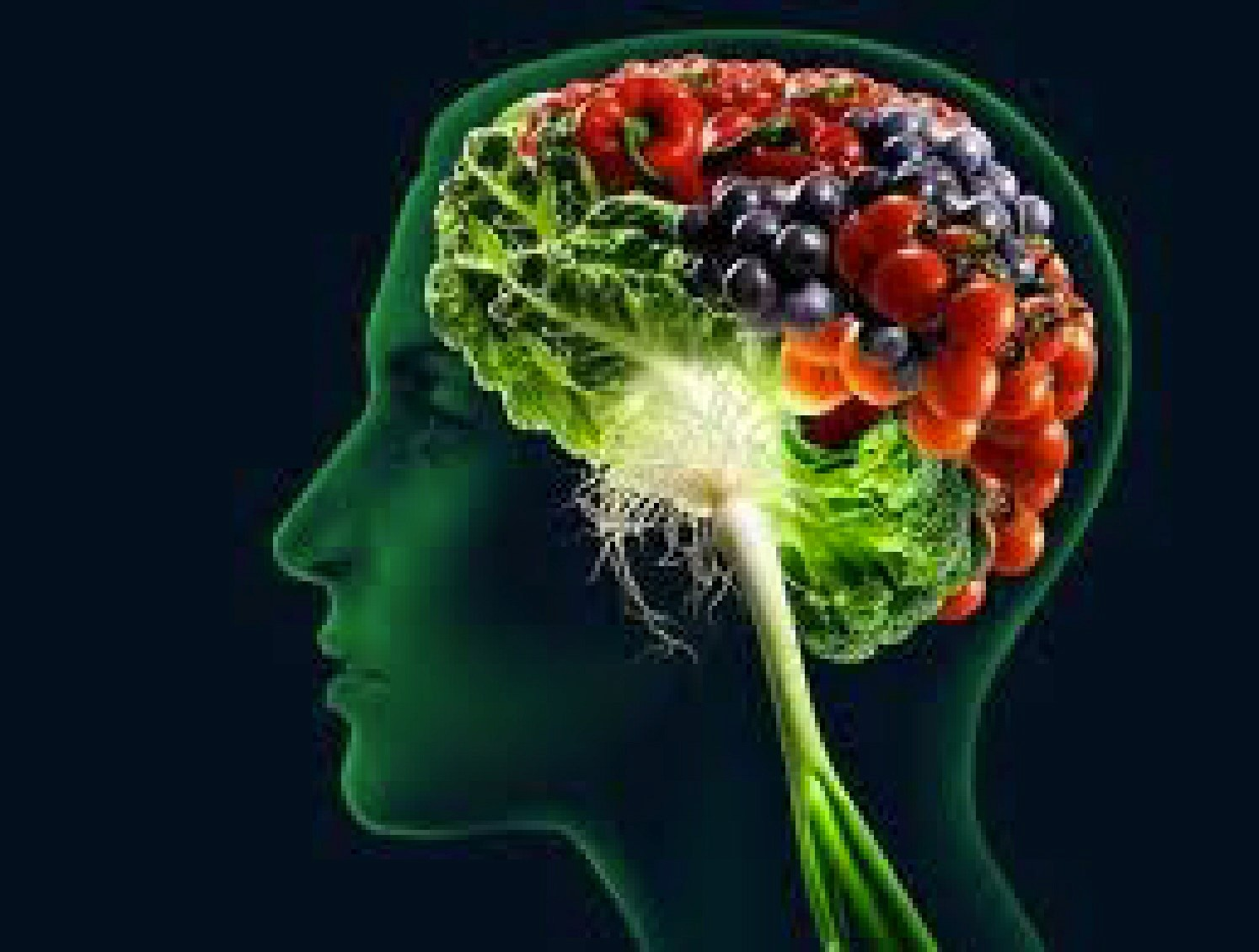 """مغزی توانمند با رژیم غذایی """"مایند"""""""
