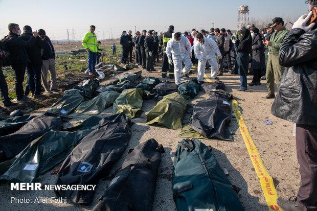 هویت ۵۰ جانباخته سقوط هواپیمای اوکراینی شناسایی شد