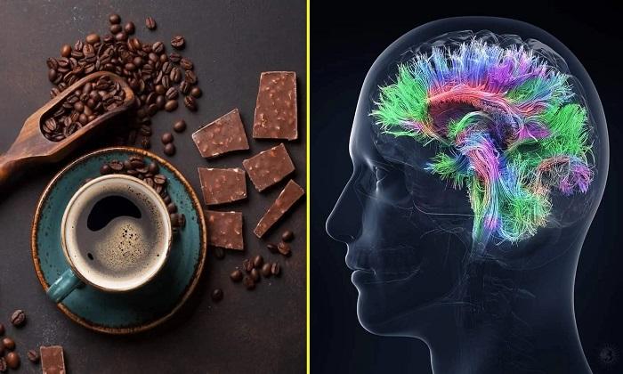 """درباره ارتباط """"قهوه و شکلات"""" با هوش انسان"""