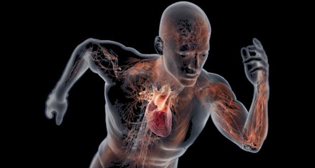 بدن انسان شگفتانگیز است!