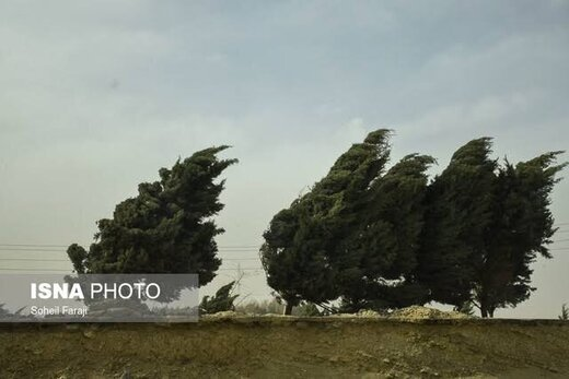 وزش باد شدید و افزایش دما در هشت استان
