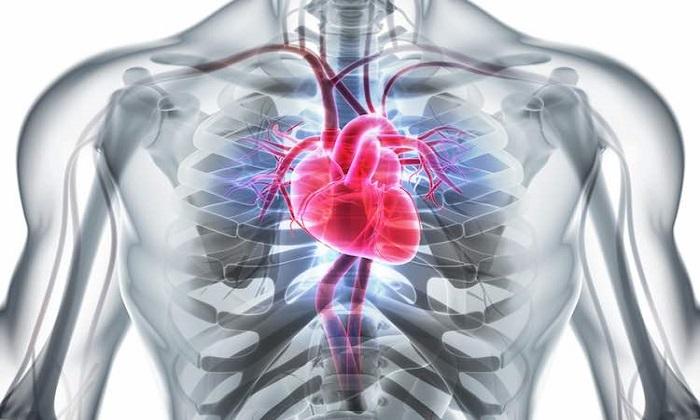 تقویت قلب بدون ورزش و رژیم غذایی!