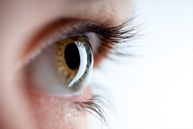 توصیههای غذایی برای تقویت بینایی