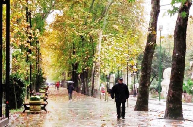 خیابان ولیعصر در یک قدمی ثبت جهانی؟