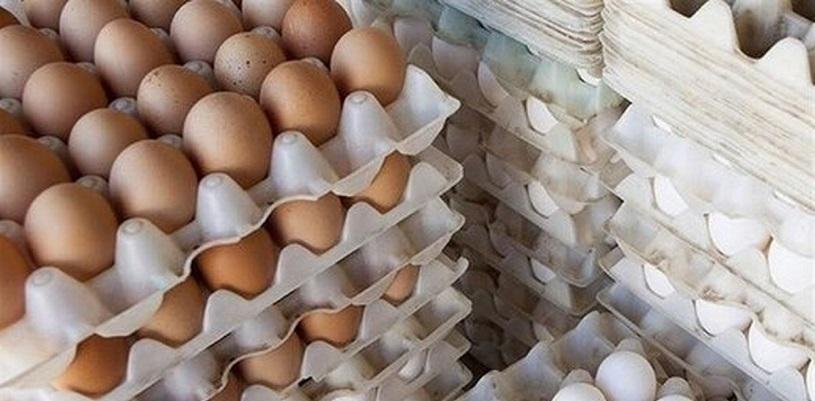 ماجرای شانه تخم مرغ ۴۵ هزار تومانی چیست؟