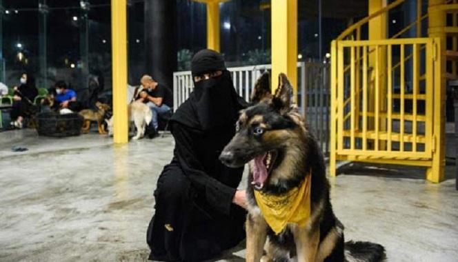 افتتاح یک کافه در عربستان برای کسانی که سگ دارند