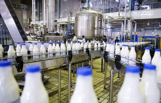 در جستجوی شیر سالم