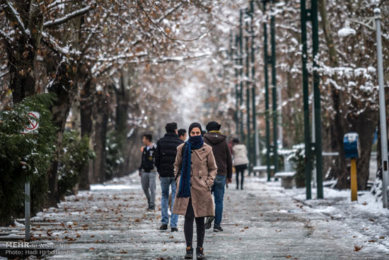 زمستان برمیگردد؛ کاهش چهار تا ۱۵درجهای دما