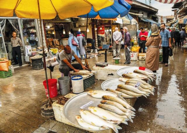 چقدر برای ماهی شب عید خرج کنیم؟