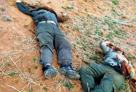 داستان تیراندازی مرگبار شکارچیان به دو محیطبان زنجانی