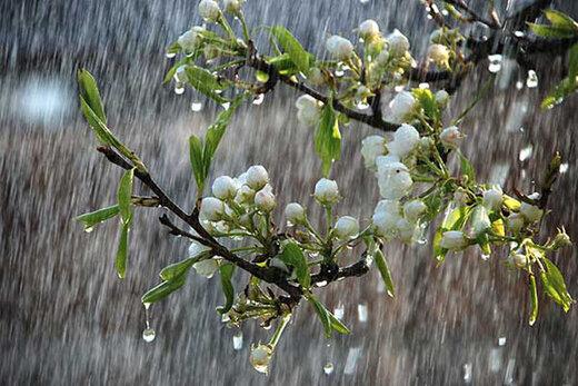 هشدار هواشناسی به وقوع رگبار و وزش باد شدید