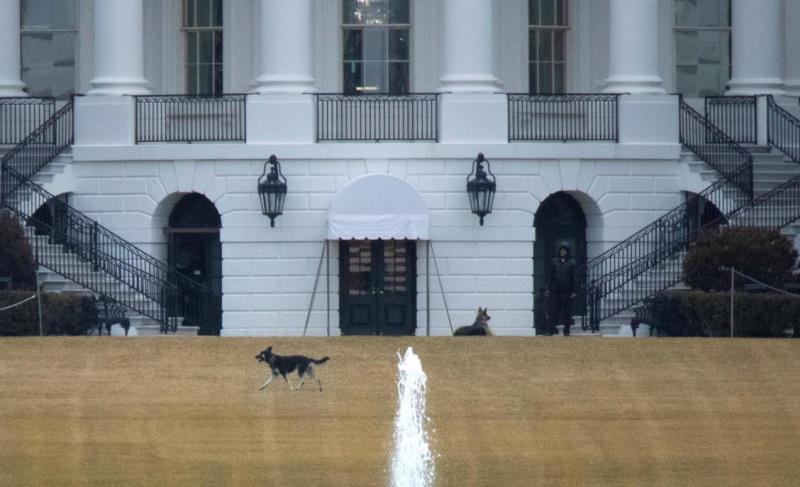 کارمندان کاخ سفید ماهی چقدر حقوق میگیرند؟