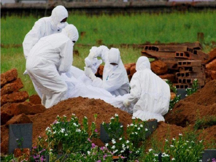 سوغاتی جدید خفاشها؛ در هند ۲۵۱ نفر به ویروس نیپا مبتلا شدند